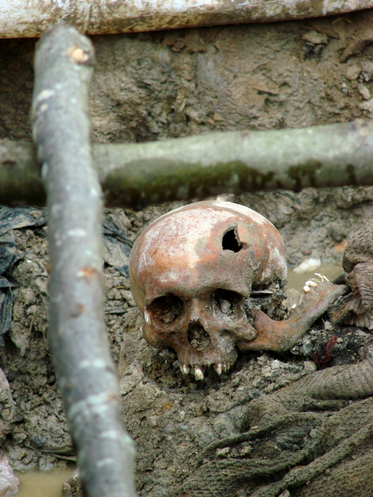 Human skull found in a mass grave in Srebrenica, Bosnia. Photo: Adam Jones